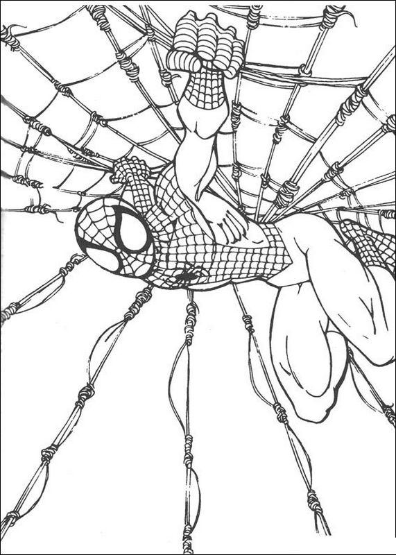 Ausmalbilder spiderman bild das grosse spinnennetz - Coloriage spiderman black ...