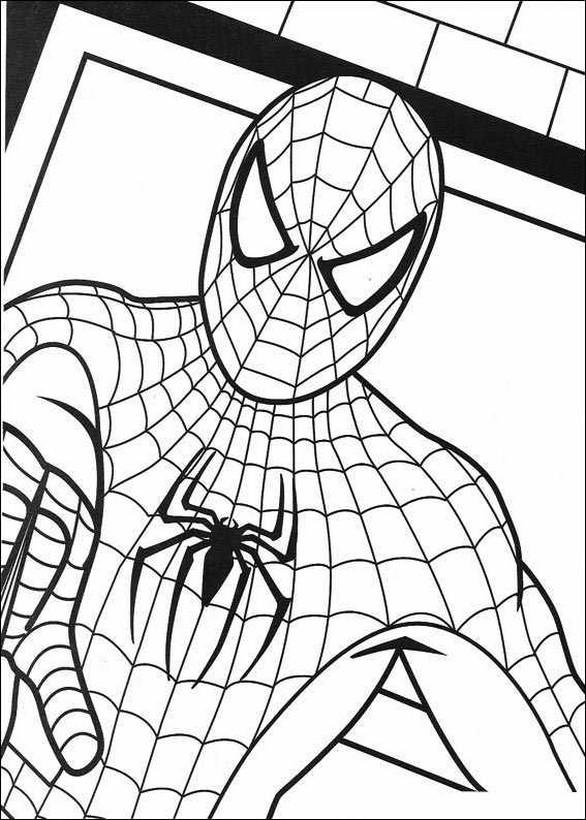 ausmalbilder spiderman bild die menschliche spinne