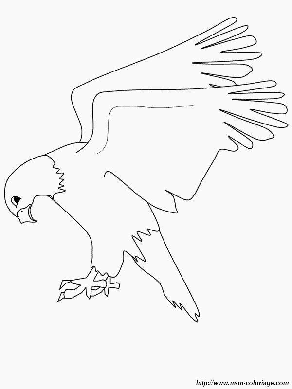 Ziemlich Adler Bilder Zum Ausmalen Bilder - Dokumentationsvorlage ...